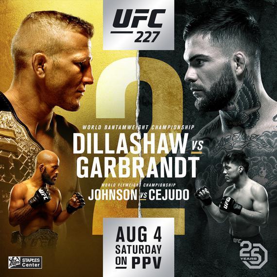 UFC227完整视频